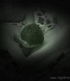 Vidéo de pénétration de nuit # 2 - Teenage kink met une caméra d'espion dans la chambre de sa soeur et baise la soeur là
